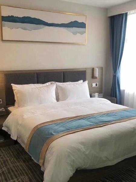 高档酒店高端大家具配备设计